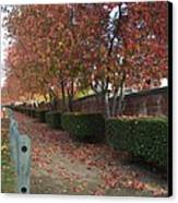 Autumn At Its Best Canvas Print by Naomi Berhane