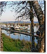 Autumn At The Harbor Canvas Print by Pamela Patch