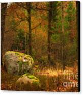 Autumn Forest Walk Canvas Print
