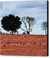 Autumn Geese Canvas Print by Bill Cannon