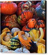 Autumn Harvest Canvas Print by Carol Cavalaris