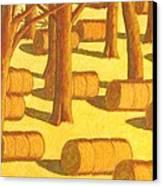 Autumn Haybales Canvas Print by John  Turner