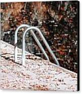 Autumn Ladder Canvas Print by David Taylor