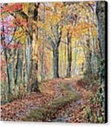 Autumn Lane Canvas Print by Heavens View Photography