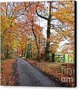 Autumn Leaves Canvas Print by Harold Nuttall