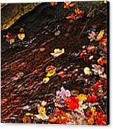 Autumn Leaves In River Canvas Print