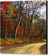 Autumn On Bottomland Road Canvas Print by Julie Dant