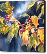 Autumn Plums Canvas Print by Sharon Freeman
