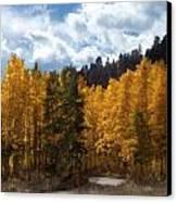 Autumn Splendor Canvas Print by Carol Cavalaris