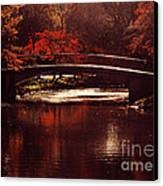 Autumnal Sunshine Canvas Print by Dana DiPasquale