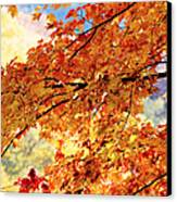 Autumns Gold Great Smoky Mountains Canvas Print by Rich Franco