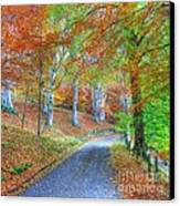 Autumns Way Vert Canvas Print by John Kelly