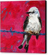 Baby Bird On A Wire Canvas Print by Patricia Awapara