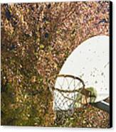 Basketball Hoop Canvas Print by Andersen Ross