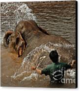 Bath Time In Laos Canvas Print by Bob Christopher