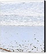 Beach Detail On Pacific Ocean Coast Canvas Print