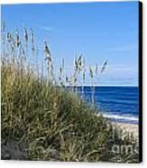 Beach Dunes. Canvas Print by John Greim