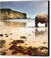 Beach Rhino Canvas Print by Carlos Caetano