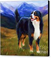 Bear - Bernese Mountain Dog Canvas Print by Michelle Wrighton