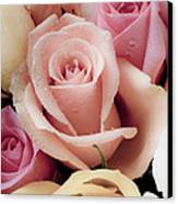 Beautiful Roses Canvas Print by Garry Gay