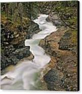 Beauty Creek, Banff National Park Canvas Print by Darwin Wiggett