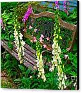 Bench Among The Foxgloves Canvas Print