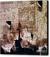 Beyond The Tattered Curtain Canvas Print by Kevyn Bashore