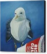 Big Gull Canvas Print by Amy Reisland-Speer