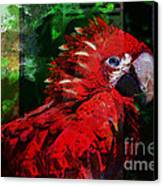 Bird Of Exotic Color Canvas Print by Christine Mayfield