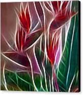 Bird Of Paradise Fractal Canvas Print by Peter Piatt