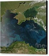 Black Sea Phytoplankton Canvas Print by Nasa