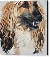 Blonde Canvas Print by Susan Herber