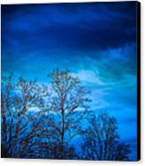Blue Delight Canvas Print by Victoria Ashley