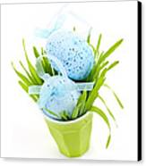 Blue Easter Eggs And Green Grass Canvas Print
