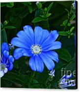 Blue Magic Canvas Print by Byron Varvarigos