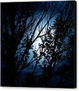 Blue Night Canvas Print by Kevin Bone