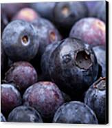 Blueberry Background Canvas Print