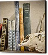 Bone Collector Library Canvas Print by Heather Applegate