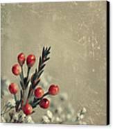 Bouquetterie Canvas Print by Aimelle