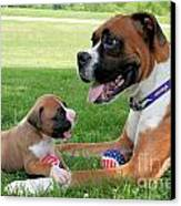 Boxer Mommy And Pup Canvas Print