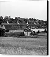 Brook Hill Dairy Farm Canvas Print