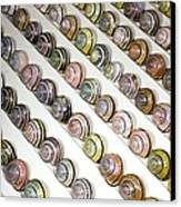 Brown-lipped Snail Colour Variants Canvas Print by Dr Keith Wheeler