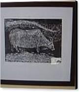 Bull  Canvas Print by Deepak chand