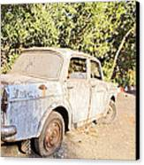 Buy Me Very Low Maintenace Canvas Print by Kantilal Patel