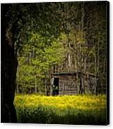 Cabin In The Flowers Canvas Print