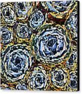 Cactus Blues Canvas Print by Yvonne Scott