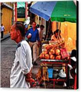 Calle De Coco Canvas Print by Skip Hunt