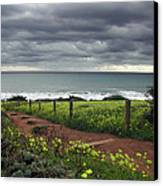 Cambria Trail Canvas Print