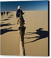 Camel Caravan And Their Shadows Canvas Print by Carsten Peter