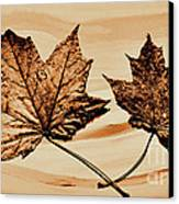 Canadian Leaf Canvas Print by Marsha Heiken